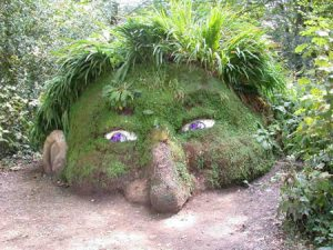 a96735_heligan-head